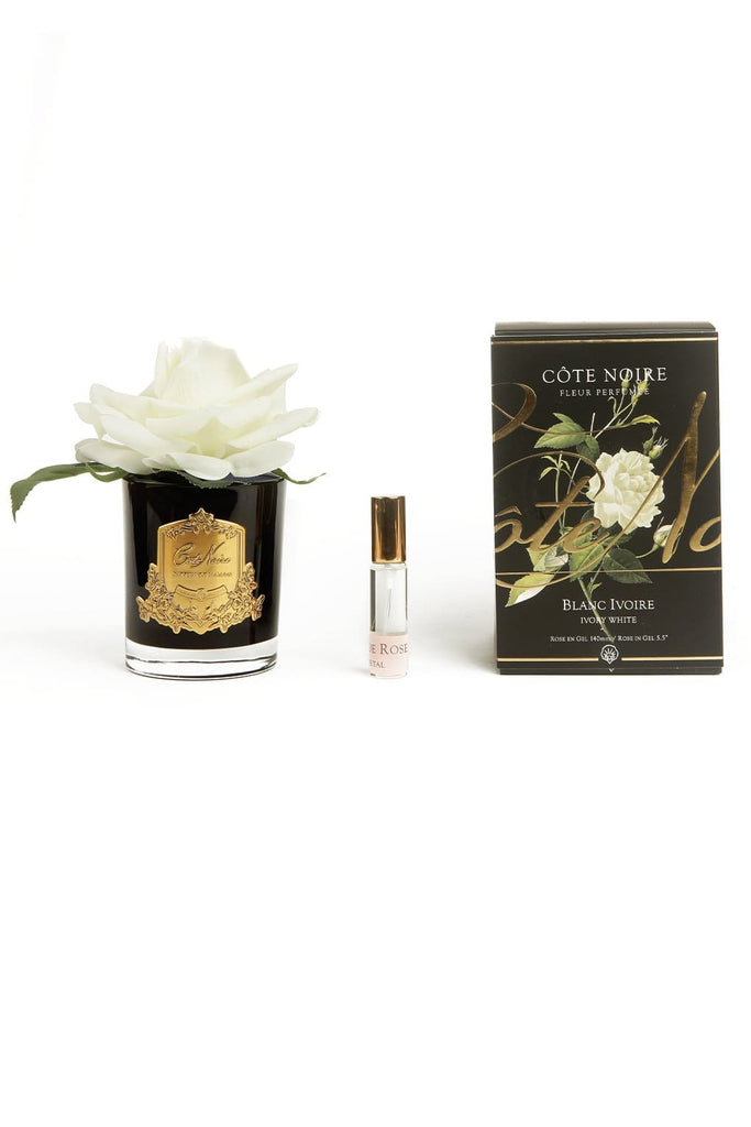 COTE NOIRE Perfumed Ivory White French Rose - Black and Gold Glass - Magpie Style