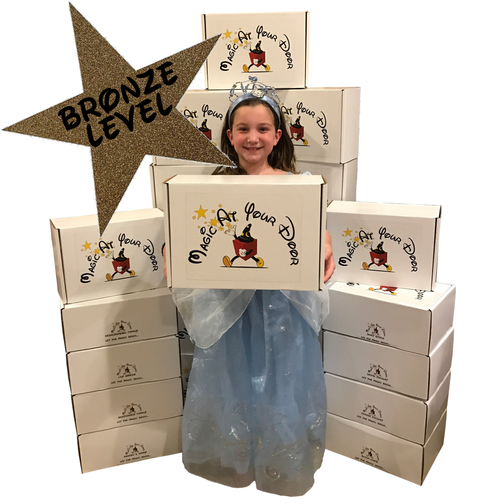 Disney Magic Box Subscription - Bronze Level