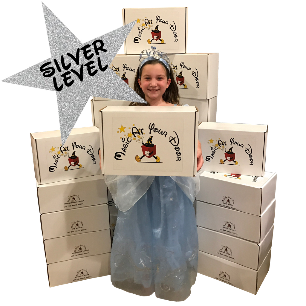 Disney Magic Box Subscription - Silver Level | Magic At Your Door