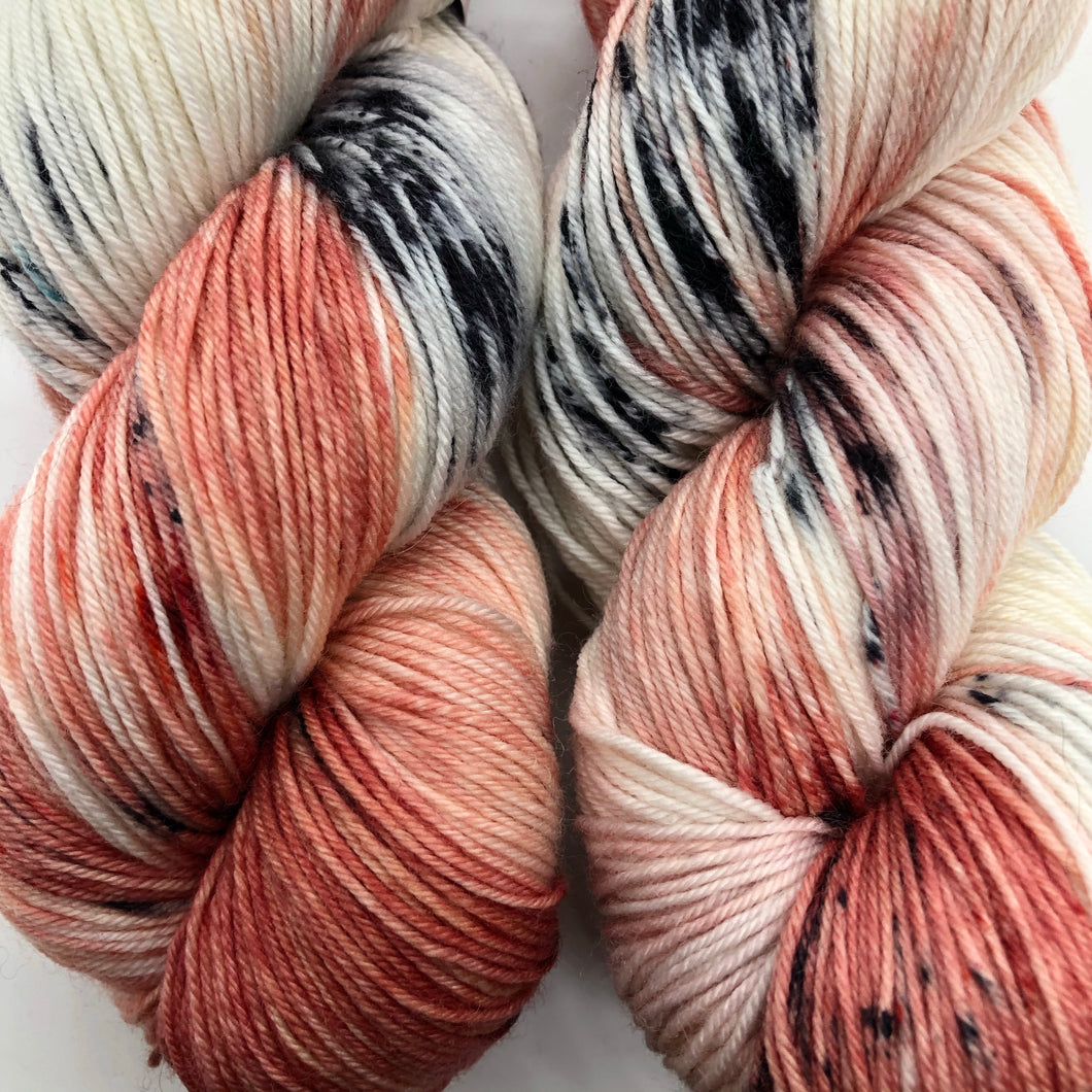 Beauty From Ashes Sock Weight Yarn- Orli