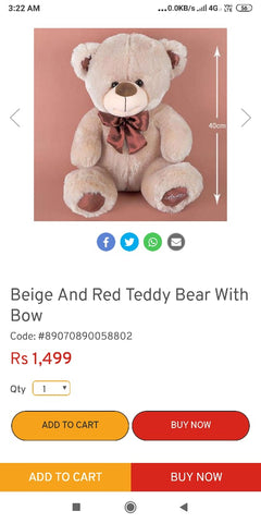 Assorted Teddy Bear