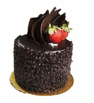 Chocolate bliss cake 1 kg - saysurprise