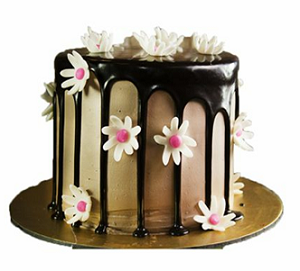 Chocolate mousse cake 1 kg - saysurprise