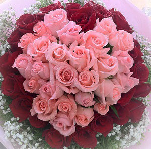 Heart 50 red & pink roses - saysurprise