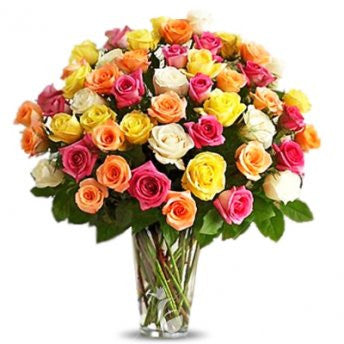 50 multi colored roses - saysurprise