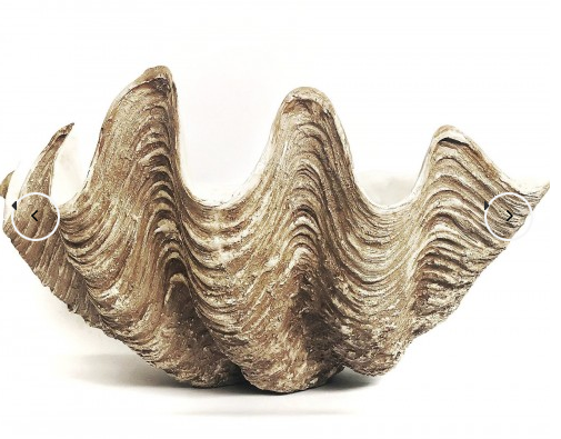 Giant Faux Clam Available On PRE ORDER