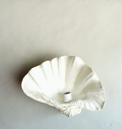 Gypset Cargo Fluted Shell Wall sconce