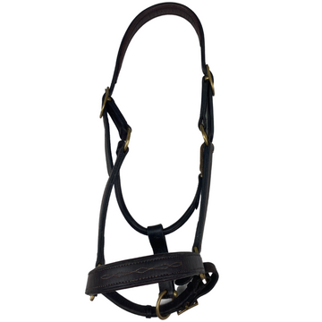 Dover Classic Leather Halter in Brown - Full