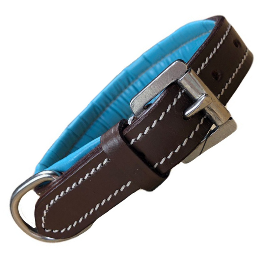 Fancy Stitched Dog Collar in Havana/Turquoise - 10