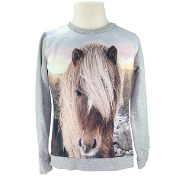Molo Icelandic Horse Marlee Sweater in Grey