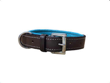NWOT Fancy Stitched Dog Collar in Havana/Turquoise - 22