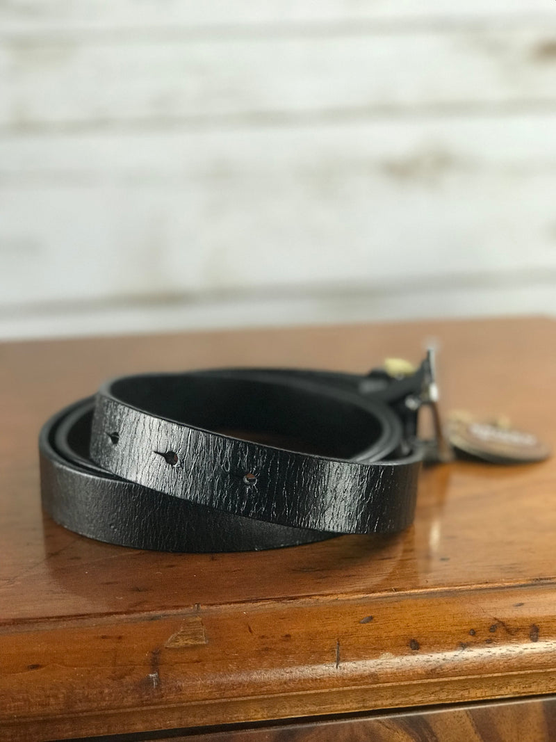 Spiced Equestrian Bianca Belt in Black - Women's Large