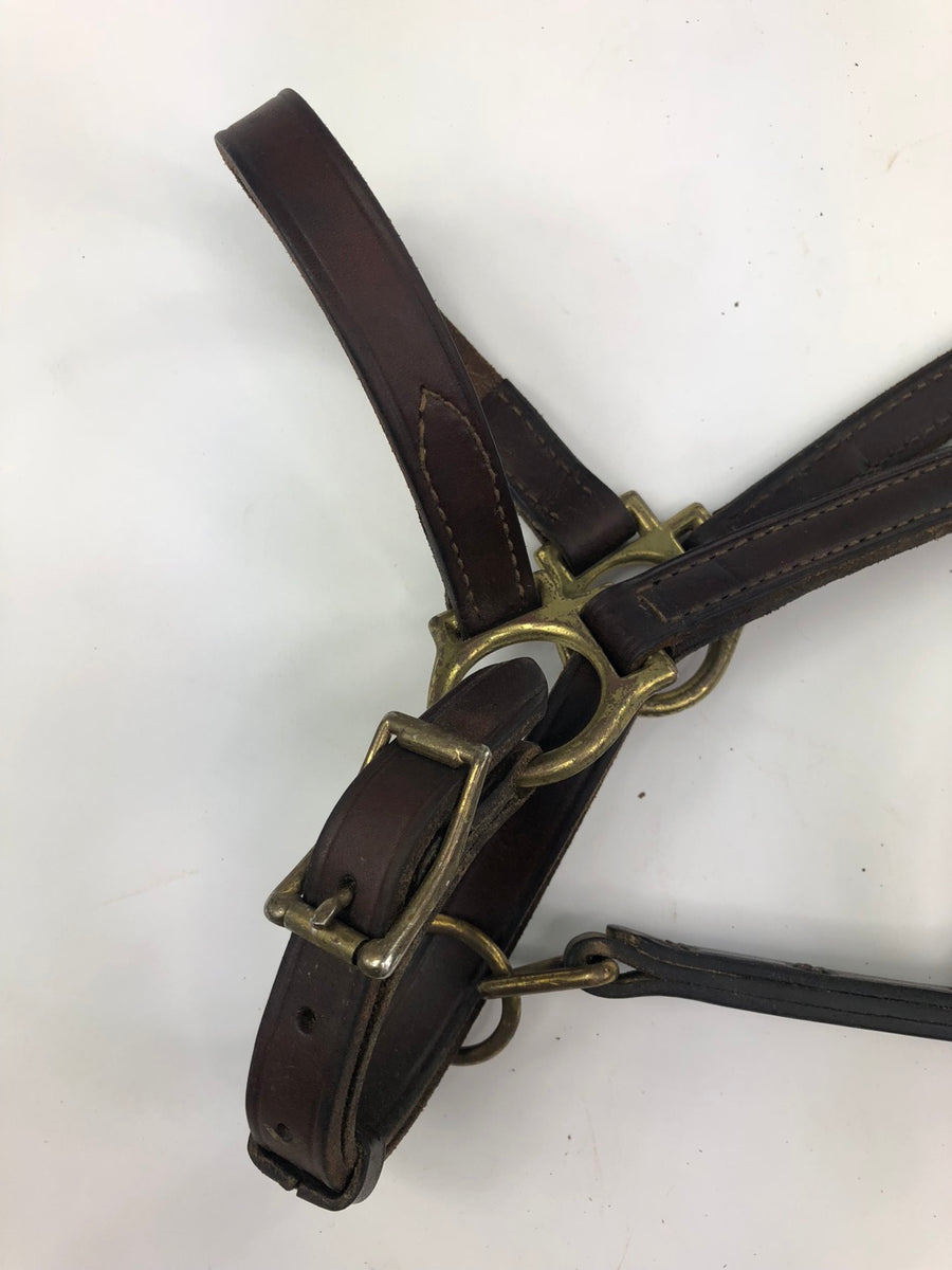 Champion Turf Leather Halter in Brown - Close Up View 2