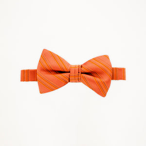 Burnt Orange Stripe Bow Tie