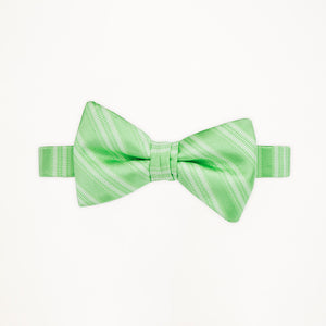 Mint Green Stripe Bow Tie