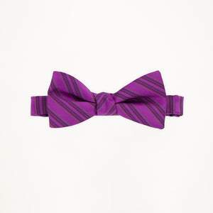Persian Plum Stripe Bow Tie