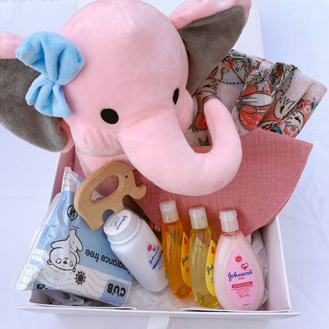 Newborn Gift Set - Baby Girl - Pink Boho Foxes