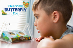 ClearView Butterfly Zoo - Voucher Only