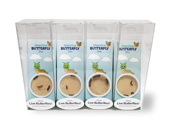 ClearView Butterfly Zoo Mini - Bulk Rate (Set of 10)