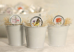 Individual Mini Seed Tins - Set of 12