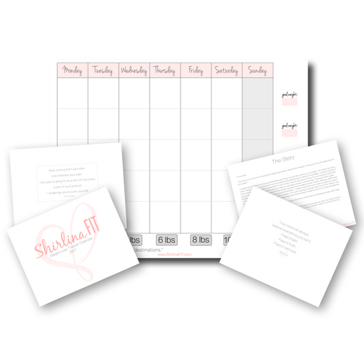 graphic relating to Printable Weight Loss Tracker named Printable Bodyweight Reduction Tracker Calendar: Very simple ShirlinaFIT