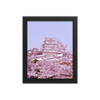 Himeji Castle with Cherry Blossoms -  - Japan Travel Planet