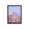 Himeji Castle with Cherry Blossoms - Japan Travel Planet
