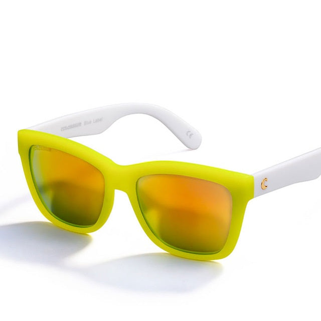 Pop Retro Wayfarer Sunglasses