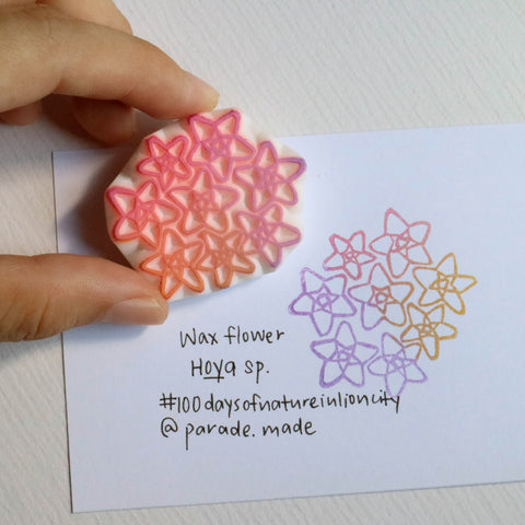 hoya flower stamp parademade singapore