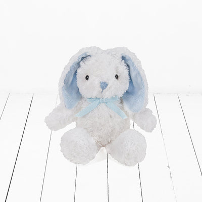 Bubbles And Snuggles Hamper, Blue