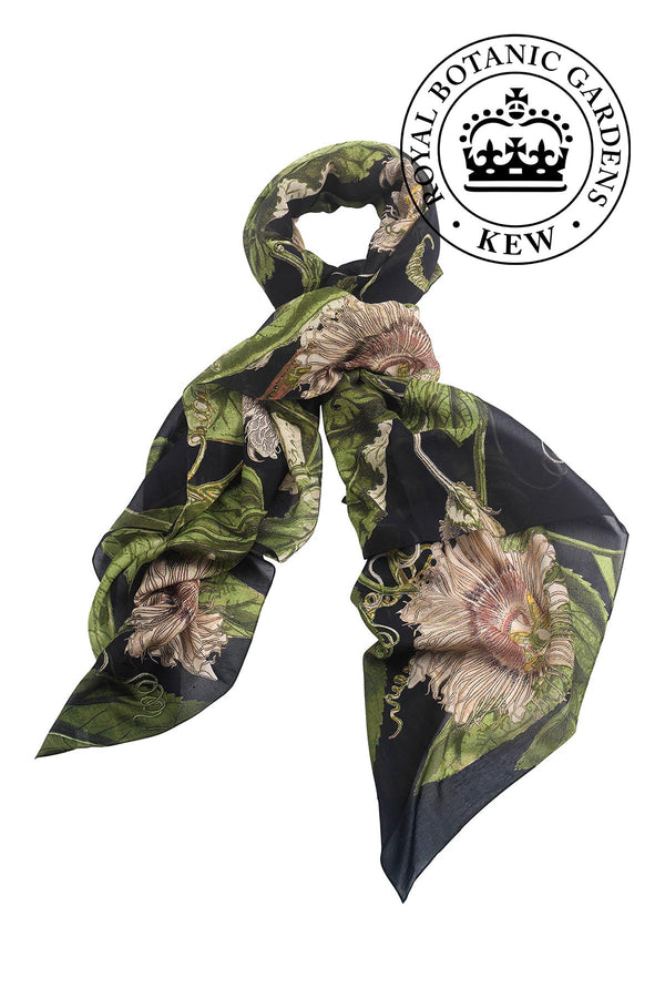 Luxurious Modal and Viscose Scarves OHS x Kew RBG Passion Flower Black