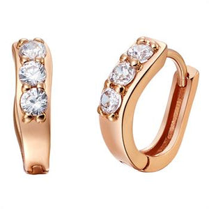 Rose Gold Earrings LSR555