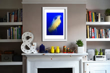 'Jelly 2' Limited Edition Giclée Print by Stephen Pick