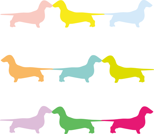 Colourful daschund card