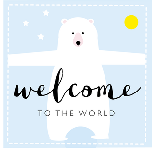 Welcome to the world bear (pink or blue available)