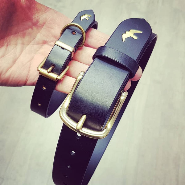Matching Belt and Dog Collar