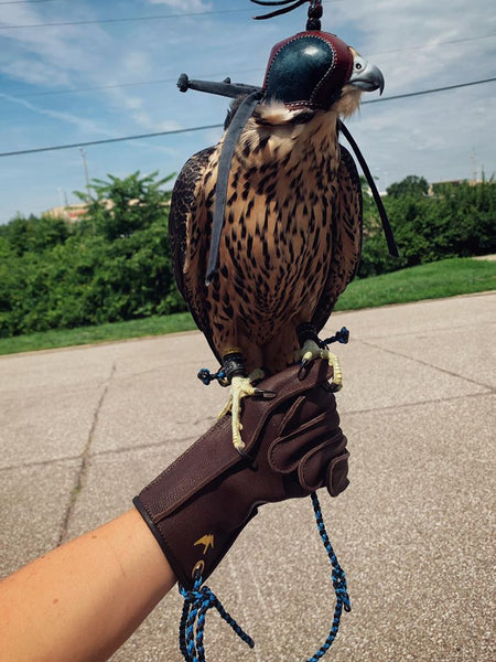 Bespoke Falconry Glove Fits Perfectly