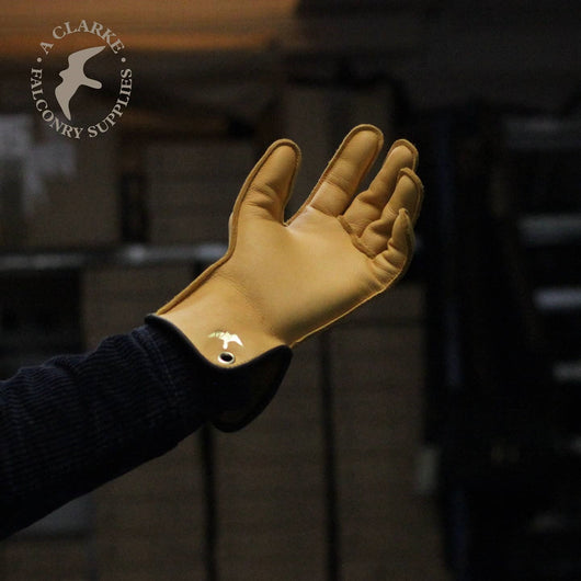 Yellow Elk Barkston Glove - Single Thickness