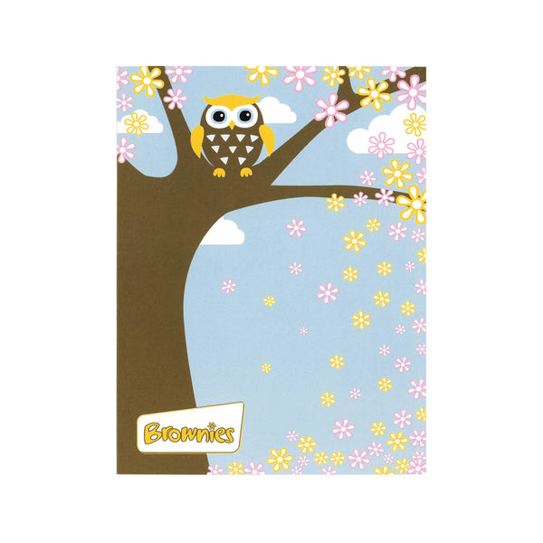 Brownie Owl cards (6pk) blank