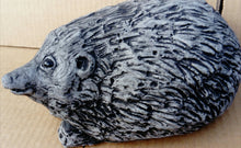 Hedgehog, Black and Grey