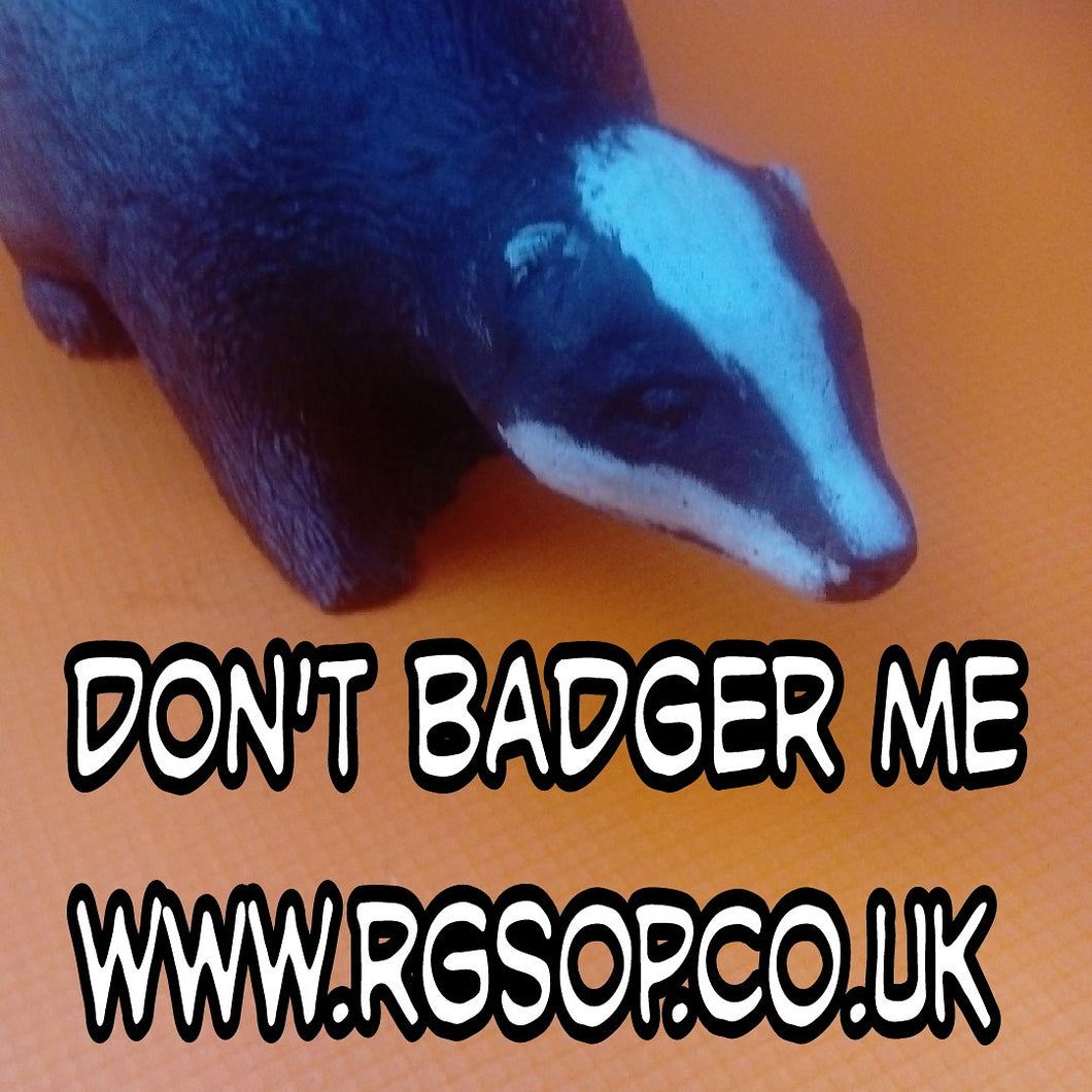 Mr Badger