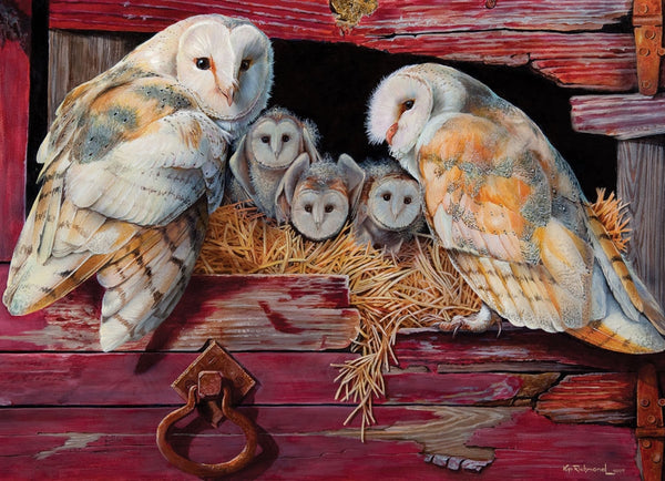 Barn Owls  - 1000 brikker