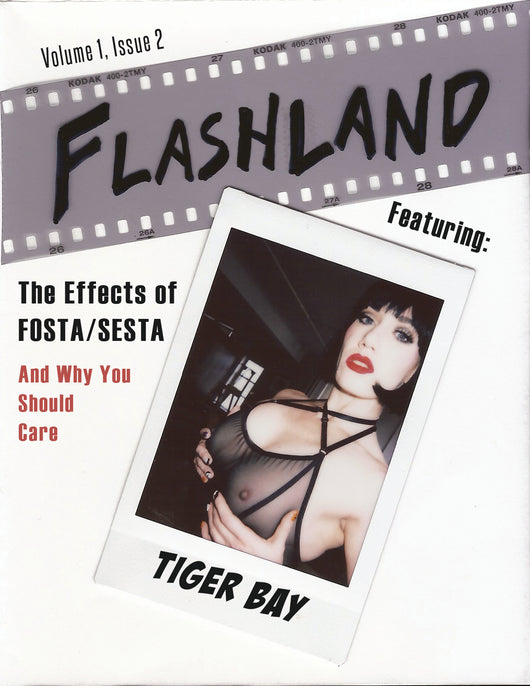 Flashland Vol. 1, Issue 2