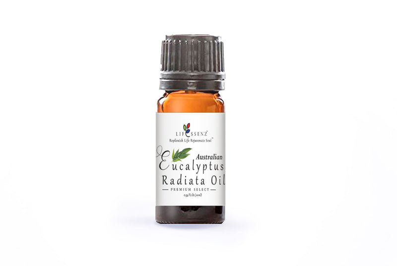 Eucalyptus Radiata Essential Oil (Organic)