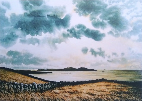 STDAVIDS.WALES:View from Carn Llidi by Andrew Bailey:Andrew Bailey:Paintings