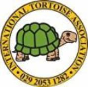 STDAVIDS.WALES:Tortoise Sanctuary:Tortoise Sanctuary:Welsh Charity