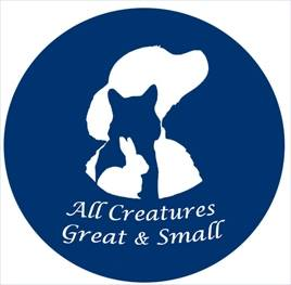STDAVIDS.WALES:All Creatures Great & Small:Creatures Great & Small:Welsh Charity