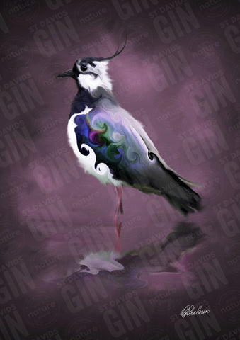 STDAVIDS.WALES:'The Lapwing' Mounted Print:St Davids Gin & Kitchen:Art