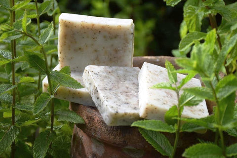 STDAVIDS.WALES:Wild Mint Soap:The Really Wild Soap Company:Soap