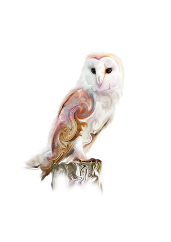 STDAVIDS.WALES:'Watchful Barn Owl' Mounted Print:St Davids Gin & Kitchen:Art